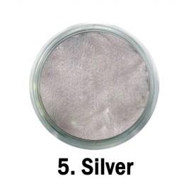 Acril Paint - 05 - Silver